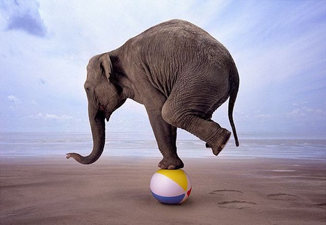 www.thauer.dk_selvbalance